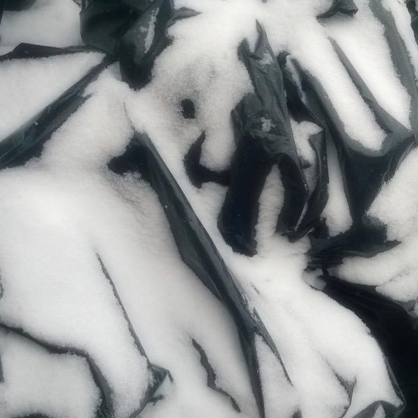 WP_20150126_008